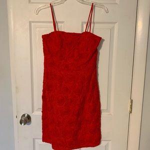 Calvin Klein red rose dress